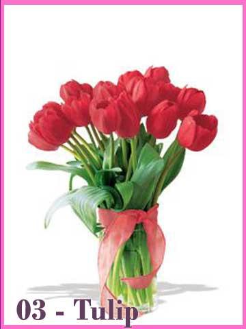 Vas Bunga Tulip Merah Hari Valentine 2013