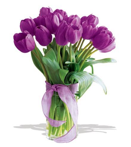 Rangkaian Bunga  Tulip  dan Makna  yang Terkandung di